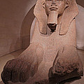 Great Sphinx At Musee Du Louvre by Ann Horn