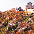 Great Wall In Springtime by Dennis Cox