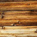 Great Weathered Wood Background by Sylvie Bouchard
