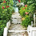 Greek Steps by Tom Gowanlock