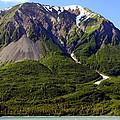Green Alaska by Sophie Vigneault