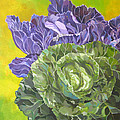 Green And Purple Cabbage by Alfred Ng