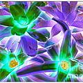 Green And Purple Cactus by Dora Sofia Caputo Photographic Design and Fine Art