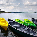 Green And Yellow Kayaks by Carlos Caetano