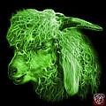 Green Angora Goat - 0073 F by James Ahn