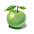 Green Apple Still Life by Irina Sztukowski