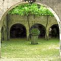 Green Arch by Joshua Tennant