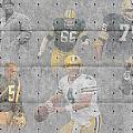 Green Bay Packers Legends by Joe Hamilton