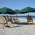 Green Beach Umbrellas by Ellen Meakin