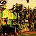 Green Beauty At Isle Of Palms by Kendall Kessler
