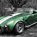 Green Cobra by Nicholas Burningham