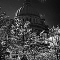 Green Copper Dome Of Belfast City Hall With Blue Cloudy Sky Behind Trees With Autumn Leaves Vertical by Joe Fox