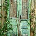 Green Cottage Doors by Angie Mahoney