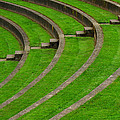 Green Curves And Steps by Robert Woodward
