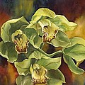 Green Cymbidium Orchids by Alfred Ng