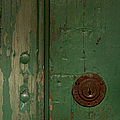 Green Door   #4377 by J L Woody Wooden