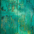 Green Door - Carmel By The Sea by David Smith