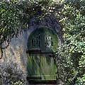 Green Door by Terry Reynoldson