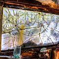 Green Drinking Glass And Smoky Bronken Windshield by Douglas Barnett