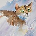 Green Eyed Cat By Daniel Adams by Daniel Adams