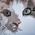 Green Eyes by Patricia Januszkiewicz