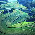 Green Farm Contours Aerial by Blair Seitz