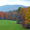 Green Field In The Fall by Duane McCullough