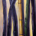 Green Gold And Black Bamboo by Randy Burns