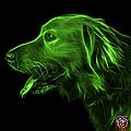 Green Golden Retriever - 4047 F by James Ahn
