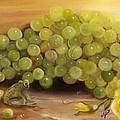 Green Grapes Green Frog by Joni McPherson