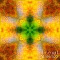 Green Heart Rainbow Light Mandala by Susan Bloom