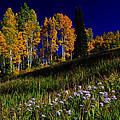 Green Hills Of Earth by Richard Cheski