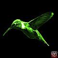 Green Hummingbird - 2054 F by James Ahn