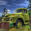 Green International by Tony Baca