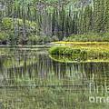 Green Lake by Wanda Krack