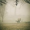 Green Lane On A Foggy Morning by Trish Tritz