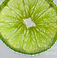 Green Lime In Tonic Water by Mitch Johanson