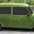 Green Mini by Peter Lloyd