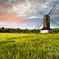 Green Ocean ''pitstone Windmill'' by Radoslav Toth