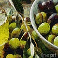 Green Olives by Dragica  Micki Fortuna