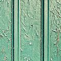 Green Painted Wood by Tom Gowanlock