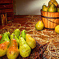 Green Pears In Rustic Basket by Olivier Le Queinec