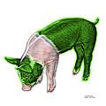 Green Piglet - 0878 Fs by James Ahn