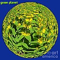 Green Planet by Joan-Violet Stretch