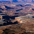 Green River Overlook by Tracy Knauer