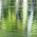 Green River Reflections by Mark Sunderland