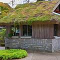 Green Roof by Jeelan Clark