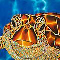 Green Sea Turtle by Daniel Jean-Baptiste