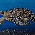Green Sea Turtle by Richard Goohs