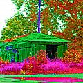 Green Shack Day by Joseph Wiegand